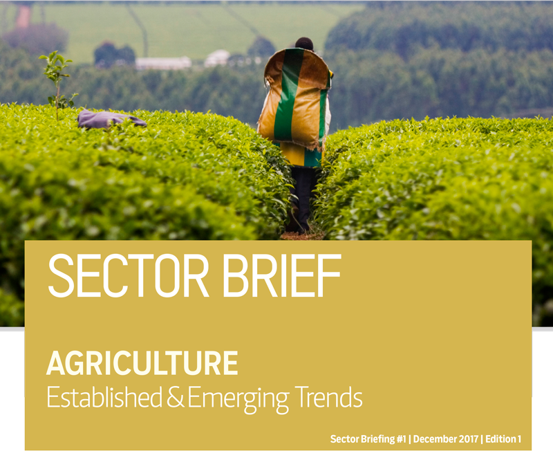 Agriculture Sector Brief – Kenya Business Guide